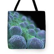 Rubella Virus Tote Bag