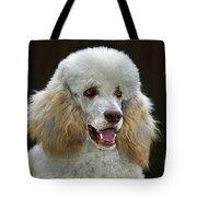101130p044 Tote Bag