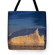 101130p128 Tote Bag