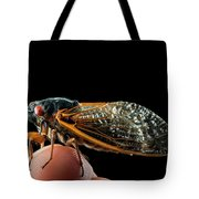 A Detailed View Of A Brood II Cicada Tote Bag