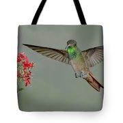 Buff-bellied Hummingbird Tote Bag
