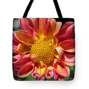 Dahlia From The Showpiece Mix Tote Bag