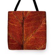 Dogwood Leaf Backlit Tote Bag