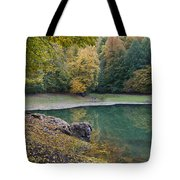 Fall Colours Tote Bag