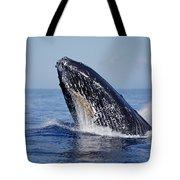 Humpback Whale Breaching Maui Hawaii Tote Bag