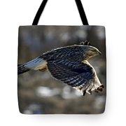 Rough-legged Hawk Tote Bag