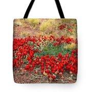 Sturt's Desert Pea Outback South Australia Tote Bag
