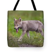 Timber Wolf Pup Tote Bag