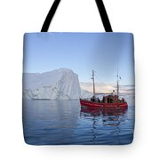 110202p206 Tote Bag