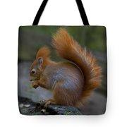 110307p078 Tote Bag