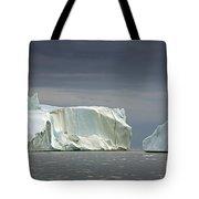 110506p052 Tote Bag