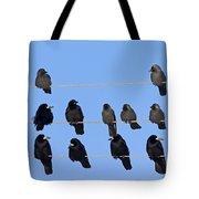 110506p063 Tote Bag