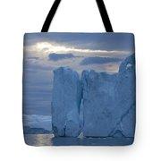 110613p179 Tote Bag