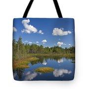 110613p186 Tote Bag