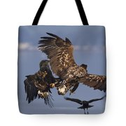 110613p229 Tote Bag