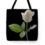 111216p340 Tote Bag