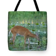 White-tailed Buck Tote Bag by Linda Freshwaters Arndt