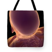 Bones Of The Head And Neck Tote Bag