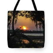 Lowcountry Spanish Moss Sunset Tote Bag