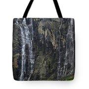 120520p197 Tote Bag