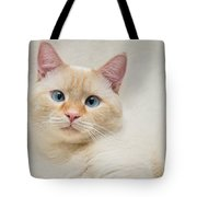 Flame Point Siamese Cat Tote Bag