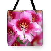 Schizanthus From The Hit Parade Mix Tote Bag