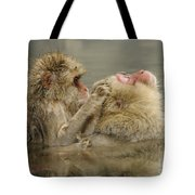 Snow Monkeys Tote Bag