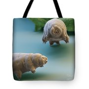 Water Bear Tote Bag by Eye of Science and Science Source