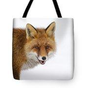 130201p058 Tote Bag