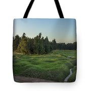 130918p146 Tote Bag by Arterra Picture Library