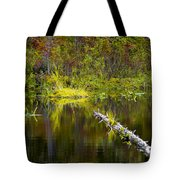 131005b-052 Forest Marsh 2 Tote Bag