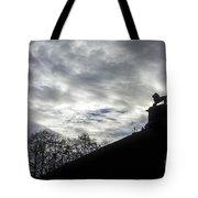 131018p340 Tote Bag