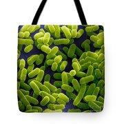 E. Coli Bacteria Sem Tote Bag