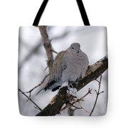 Eurasian Collard Dove Tote Bag