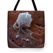 Human Macrophage Tote Bag