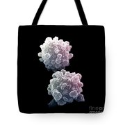 Lymphocytes Undergoing Apoptosis Tote Bag by David M. Phillips