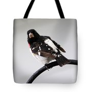 Rose Breasted Grosbeak Tote Bag
