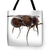 Tsetse Fly Tote Bag