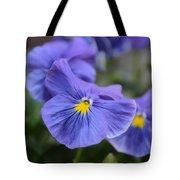 Viola Tricolor Heartsease Tote Bag