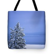 140303a-12 Winter Blues Tote Bag