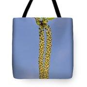 140420p090 Tote Bag