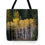 Guardians Of Trestle Creek  -  141102a-138 Tote Bag