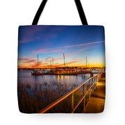 Bridge Of Lions St Augustine Florida Painted Tote Bag