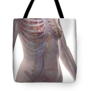 The Cardiovascular System Female Tote Bag