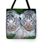 Tigre Blanc Panthera Tigris Tote Bag
