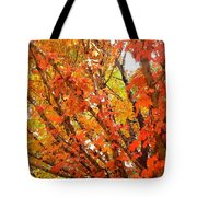 Fall Explosion Of Color Tote Bag