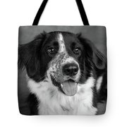 Portrait Of A Border Collie Mix Dog Tote Bag