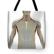The Muscle System Tote Bag