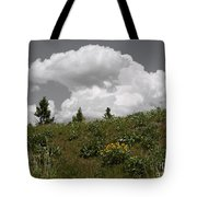 Cloudy With Green Tote Bag
