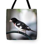 Rose Breasted Grosbeak Tote Bag